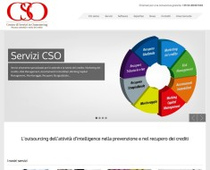 CSO Outsourcing