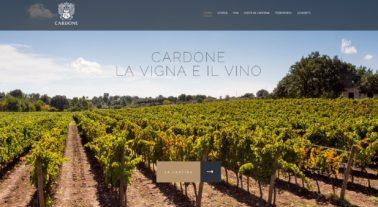 Cardone Vini 2017